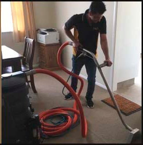 Carpet Amp Upholstery Cleaning Wellington Commercial Cleaners