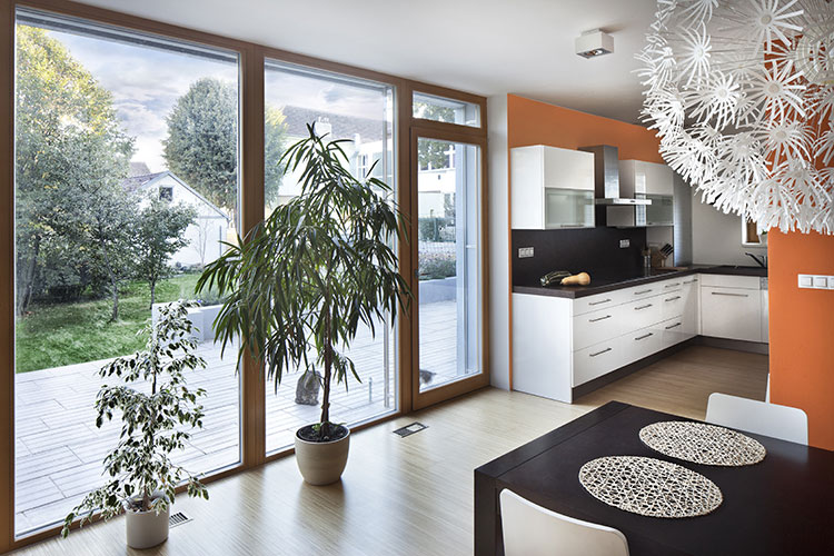 tauranga cleaning services