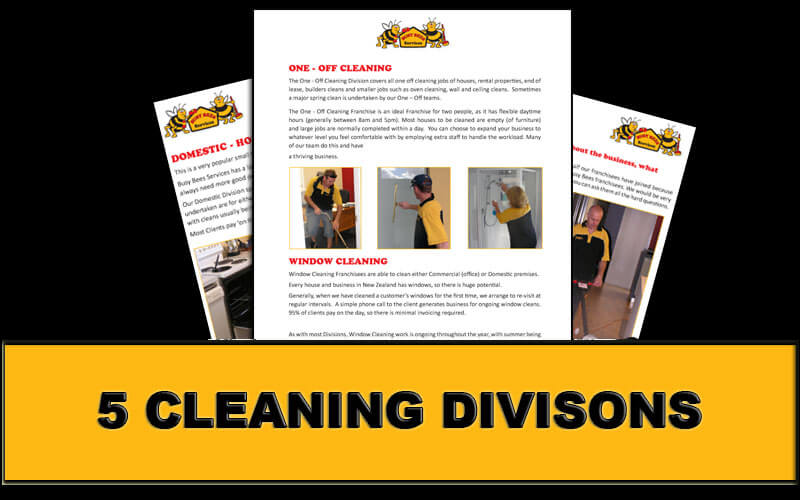 franchises for cleaning