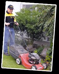 lawn mowing gardening